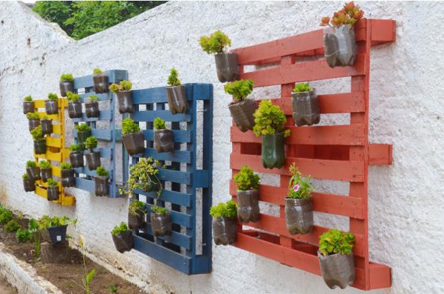 Painel de pallet para plantas colorido