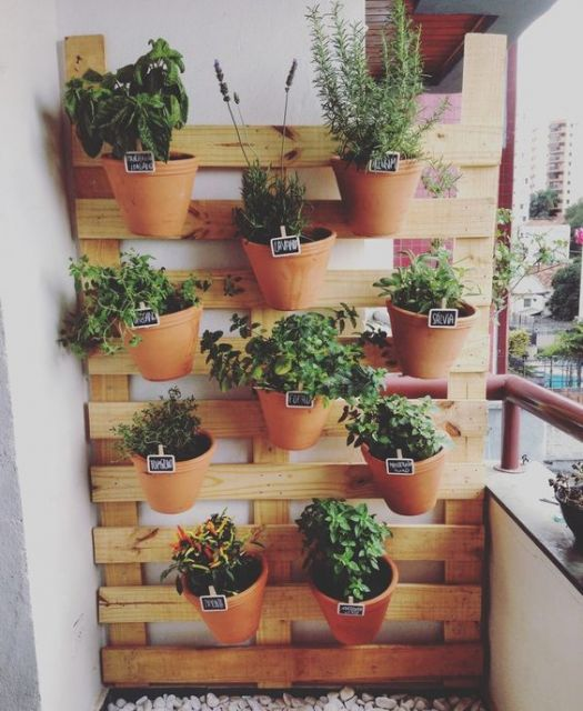 Painel de pallet para plantas