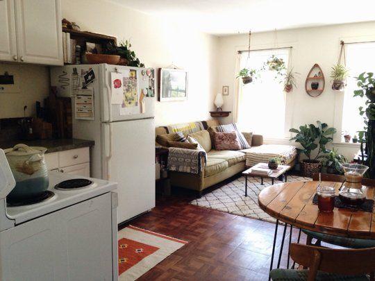 casa pequena com plantas