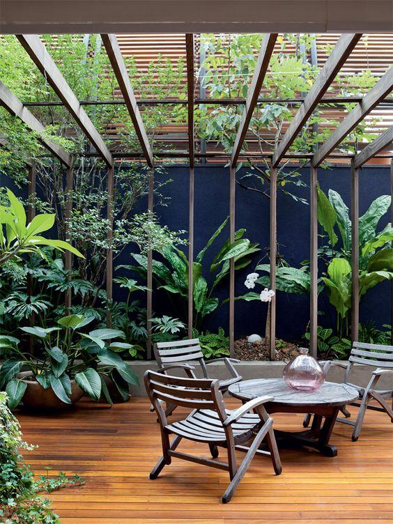 pergolado e plantas