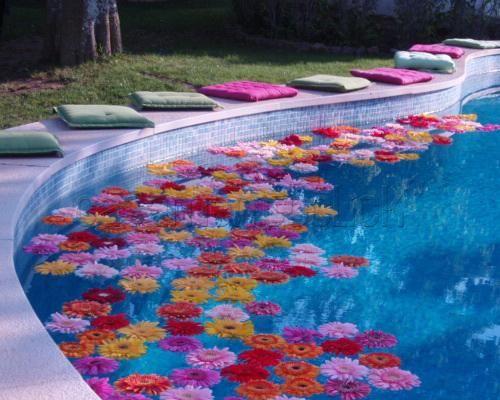flores-na-piscina