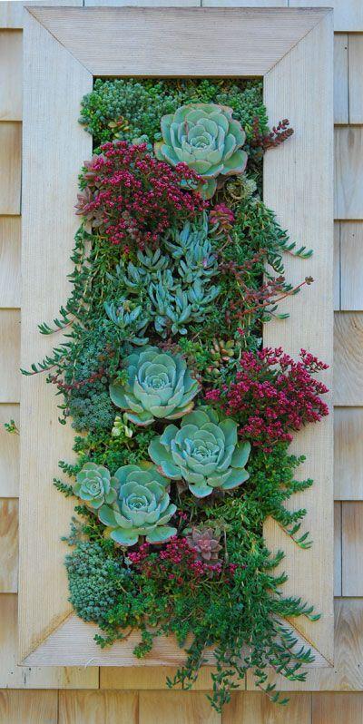 flores-no-jardim-vertical