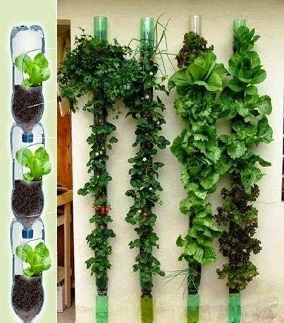 Jardim vertical veja mais de 50 modelos com fotos e - Material para jardin vertical ...