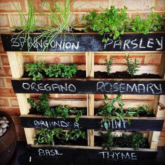 jardim-vertical-com-nomes-das-plantas