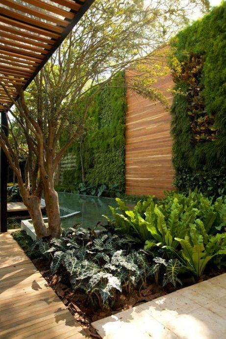 Jardim vertical veja mais de 50 modelos com fotos e for Muros y fachadas verdes jardines verticales