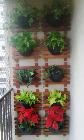 jardim-vertical-parede-de-varanda
