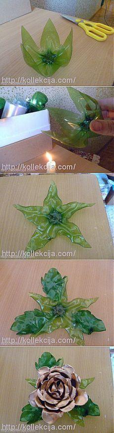 flor-de-garrafa-pet