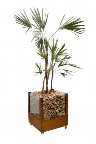 Vasos de vidro para plantas e madeira