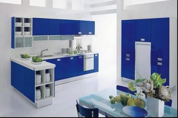 Cozinhas pequenas com decoração moderna em azule braca com flores