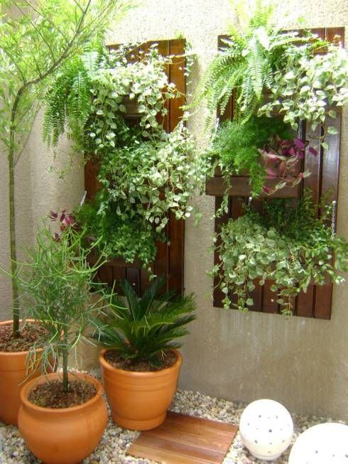 Jardim de inverno com vasoss