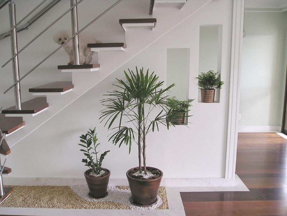 Jardim de inverno sob a escada