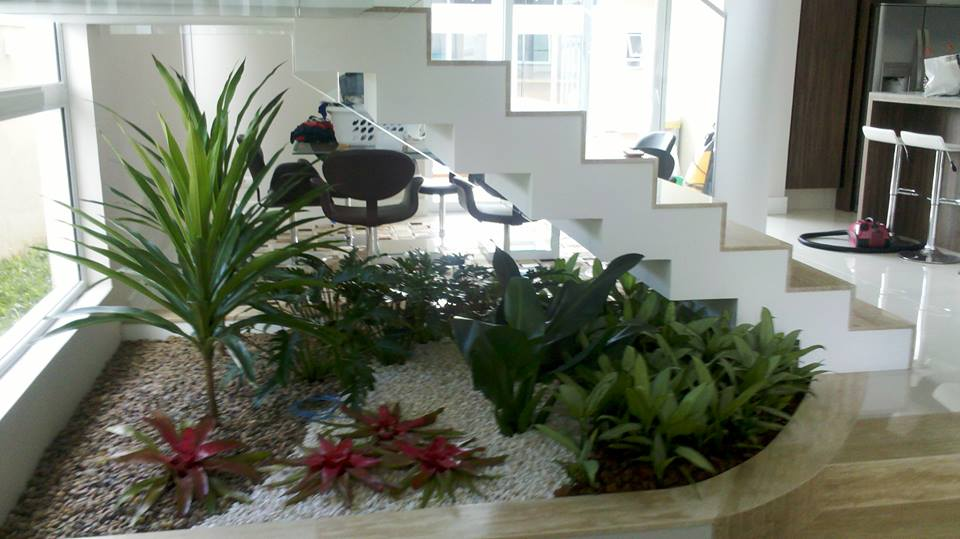 jardim de inverno com suculentas com plantas