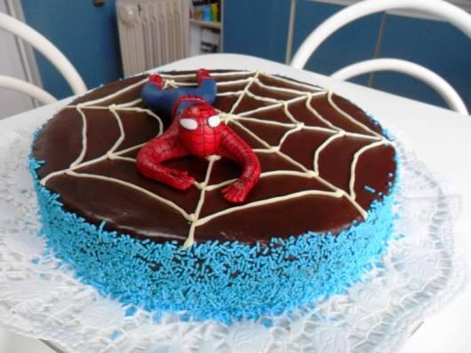 Bolo do homem aranha 60 fotos e como voc mesmo fazer 53 bolo bsico de chocolate com teia de aranha altavistaventures Image collections