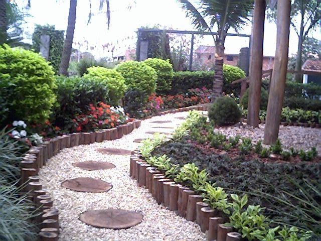 Plantas rasteiras para canteiros