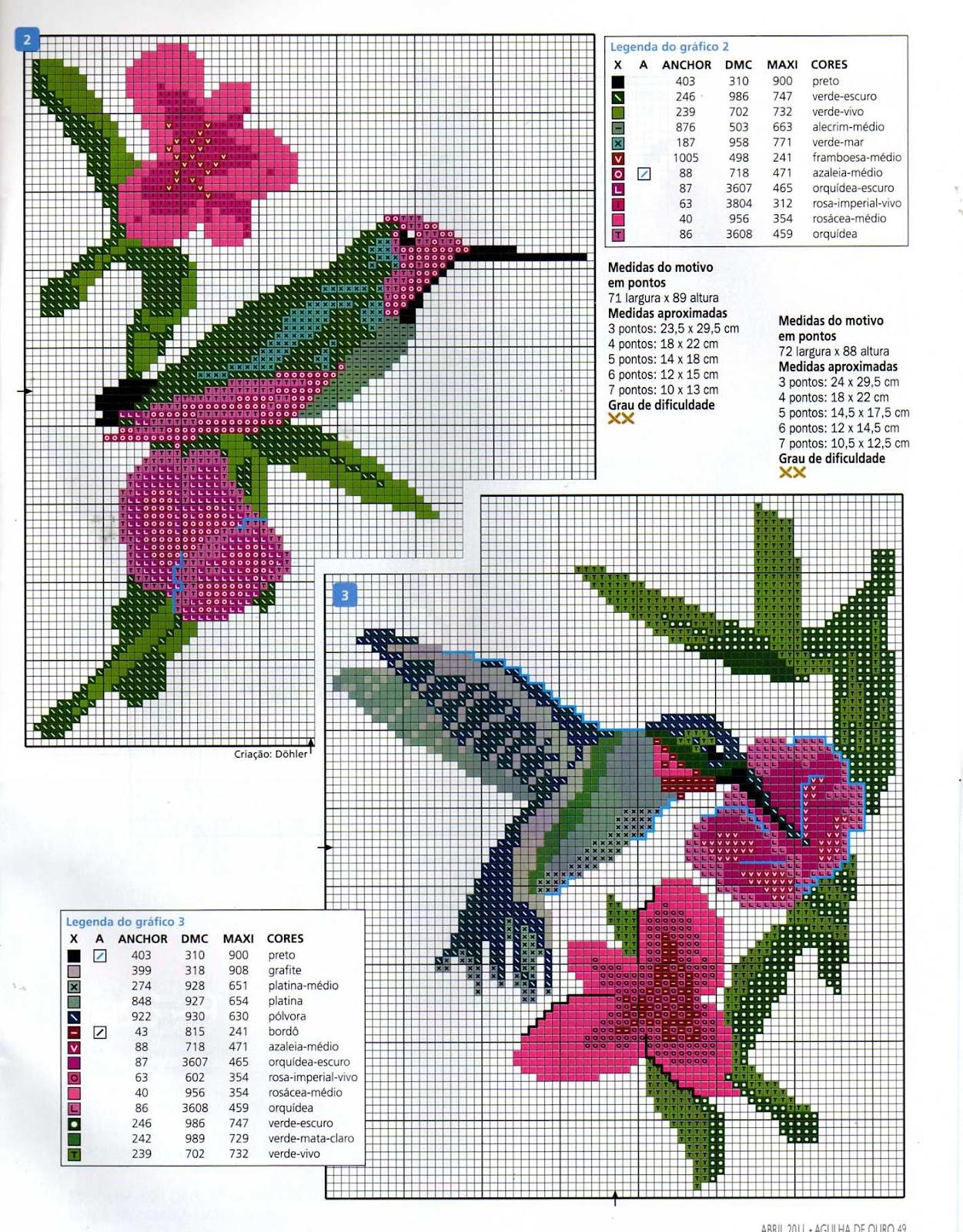 grafico de beija flor no ponto curz