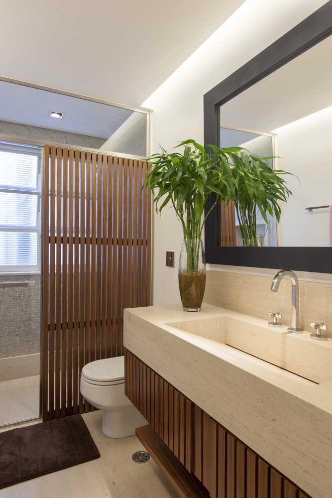 bambu plantado na terra no banheiro