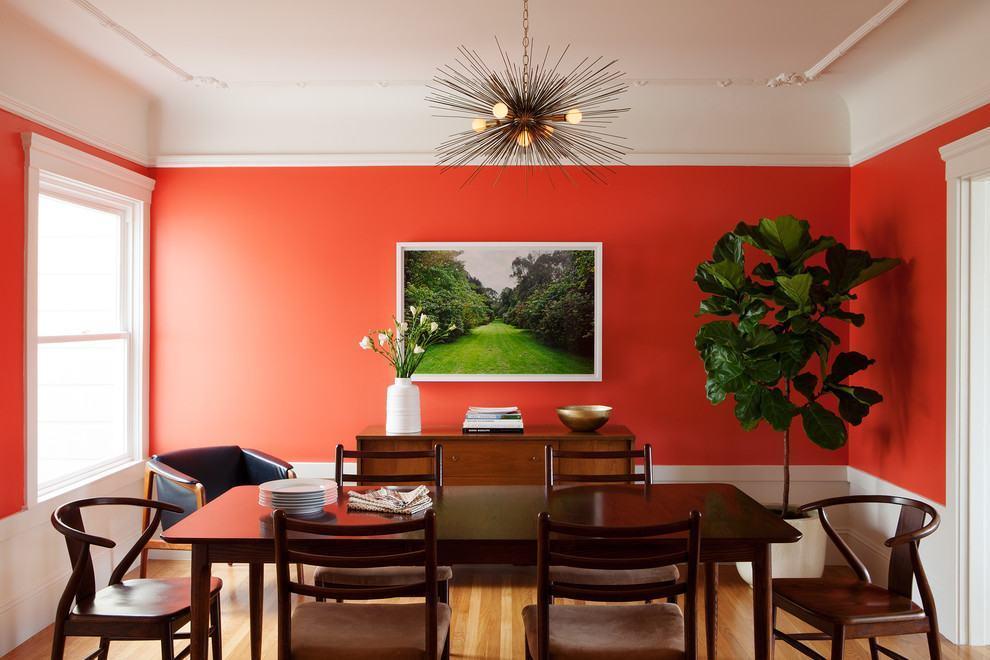 Parede em vermelho com planta no canto da sala