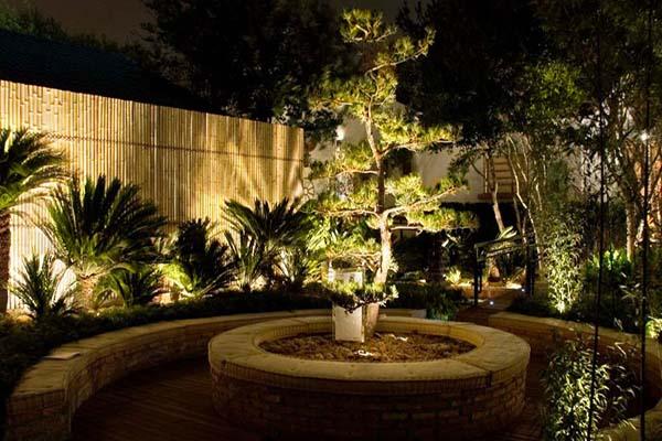 Jardim com muiatas luzes verticais