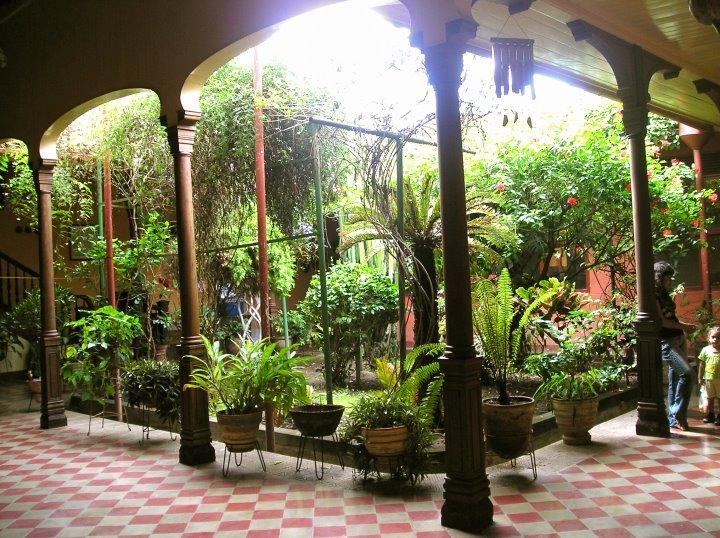 Jardim interno com iluminação totalmente natural